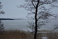 Frozen baltic sea (12695105374).jpg