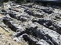Fuentidueña - Necropolis.jpg