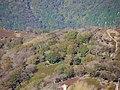 Fujiwaracho Hongo, Inabe, Mie Prefecture 511-0523, Japan - panoramio (2).jpg