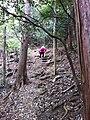 Fukiaicho, Chuo Ward, Kobe, Hyogo Prefecture 651-0058, Japan - panoramio (8).jpg
