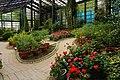 Garden Under Glass 玻璃花坊 - panoramio.jpg