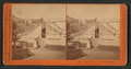 Garden view, Woodward's Gardens, from Robert N. Dennis collection of stereoscopic views 2.png