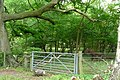 Gate below Shirburn Hill - geograph.org.uk - 1435578.jpg