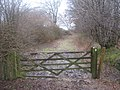 Gate into Weston's Wood - geograph.org.uk - 1722524.jpg