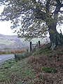Gate near Little Torboll - geograph.org.uk - 1592368.jpg