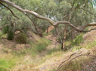 Gawler River (South Australia) - Image: Gawler River at Angle Vale when dry