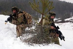Georgian Armed Forces - Troops of 23rd battalion during ISAF deployment program 2012