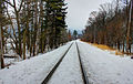 Gfp-wisconsin-devils-lake-state-park-rail-tracks-in-snow.jpg