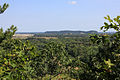 Gfp-wisconsin-mill-bluff-state-park-more-bluff-views.jpg