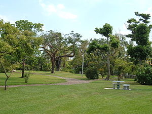 University of Miami - The John C. Gifford Arboretum on the University of Miami campus