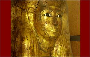 TT8 - The gilded inner coffin of Kha from his TT8 tomb (now in the Museo Egizio of Turin)