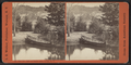 Glen Iris -- Lake and Indian canoe, Portage, N.Y, by Walker, L. E., 1826-1916.png