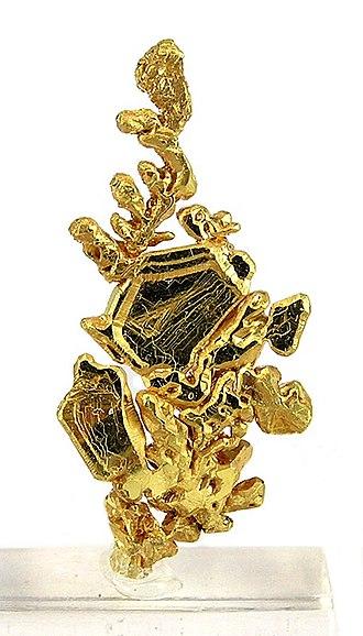 Mariposa County, California - Specimen gold from the Mockingbird mine