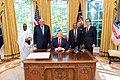 Grand Ethiopian Renaissance Dam Meeting (49025412566).jpg