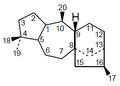 Grayanotoxano - Numeración.png