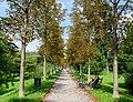 Graz (36345537400).jpg