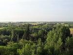 Grazing the Trees (15763553714).jpg