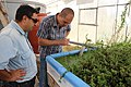 Green Age Aquaponics - Armenia 02.jpg
