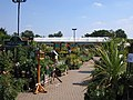 Grovelands Garden Centre - geograph.org.uk - 38931.jpg