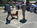Guide dogs K-9.JPG