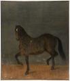 Häst kallad Brandklipparen (David Klöcker Ehrenstrahl) - Nationalmuseum - 14792.tif