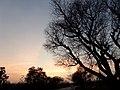 HIGHWAY KODUR AP - panoramio.jpg