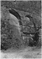 Half Arch, west side of Canyon above Temple of Sinawava. - NARA - 520466.tif