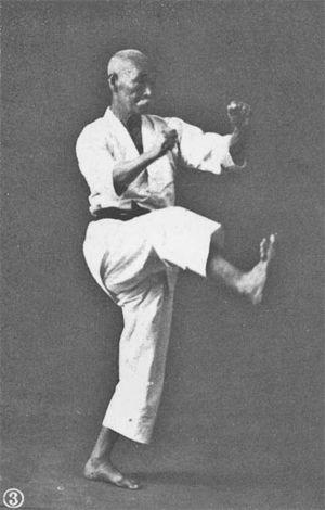 Karate - Hanashiro Chomo