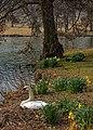 Harewood Park IMG 1778 - panoramio.jpg