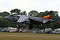 Harrier (5168691225).jpg