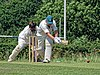 Hertfordshire County Cricket Club v Berkshire County Cricket Club at Radlett, Herts, England 022.jpg