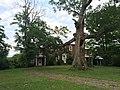 Hickory Hill Petersburg WV 2014 07 29 20.JPG