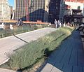 High Line Phase 3 11th Ave ramp Sept 2014.jpg