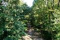 Hilden - Hildener Heide - Jaberg (Aussichtsturm) 01 ies.jpg
