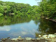 Hill's Pond, Monotomy Rocks Park, Arlington,Massachusetts