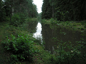 Hjälmare kanal - The canal southwards through the forest. July 2005