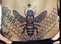Honey Bee Tummy.jpg