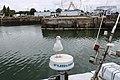 Honfleur Port de pêche 12.jpg