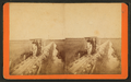 Horse R.R. from shore to St. Augustine lighthouse across the marsh, from Robert N. Dennis collection of stereoscopic views.png