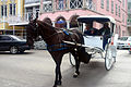 Horse and carriage, Nassau.jpg