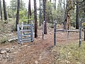 Horton Creek Trail, Payson, Arizona - panoramio (4).jpg