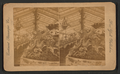 Hot house scene in California, from Robert N. Dennis collection of stereoscopic views 3.png