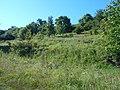 Hulyaihorodok, Cherkas'ka oblast, Ukraine, 20740 - panoramio (2).jpg