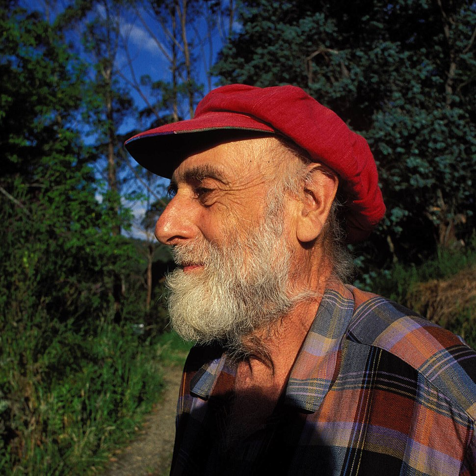 Hundertwasser nz 1998 hg