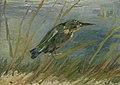 IJsvogel aan de waterkant - s0100V1962 - Van Gogh Museum.jpg
