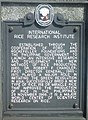 IRRI historical marker 2.jpg