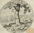 Iacobi Catzii Silenus Alcibiades, sive Proteus- (1618) (14749293962).jpg