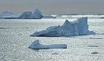 Icebergs Lemaire 1.jpg
