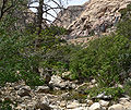 Icebox Canyon 7.jpg