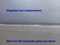 Illegitimi non carborundum el playa.png